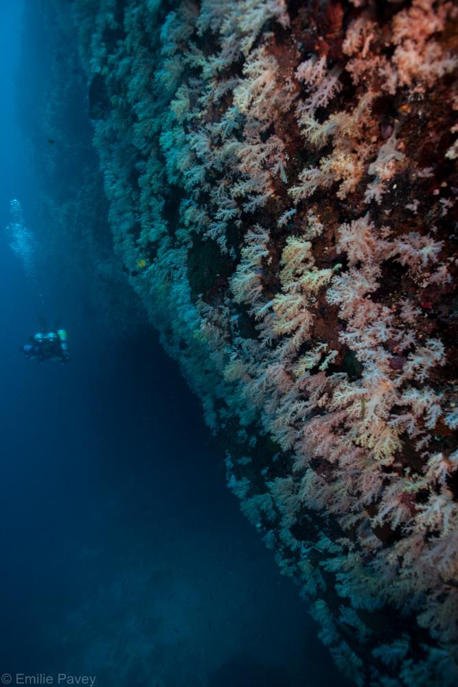 Marigondon cavern entrance
