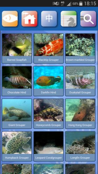 HK Fish app - species of grouper