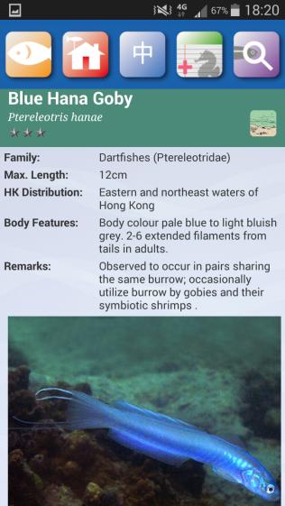 HK fish app - listing