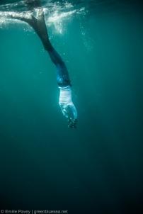 SEA CWT-6589