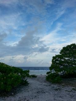 Fakarava - ocean side