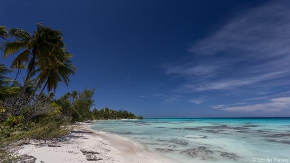 Fakarava - lagoon side