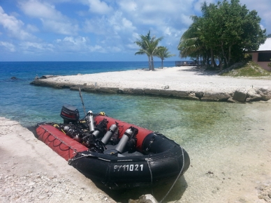 The dive sites are just five minutes away, so a small speedboat suffices