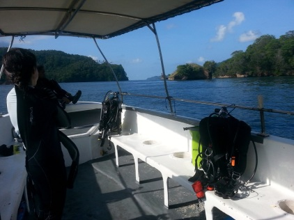Taking a speedboat to the dive site